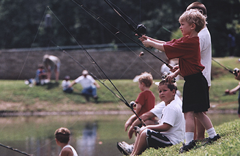 Memphis light gas and water community for Fishing license tn